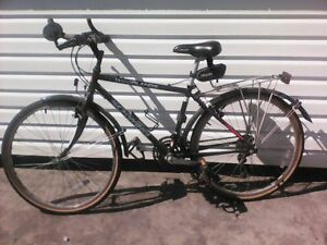 Schwinn Woodlands Commuter bike