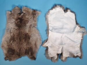 MIXED GRADE Rabbit Skins for Crafts - Set of 5