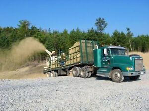 Looking for Square HAY BALES - Moncton Area