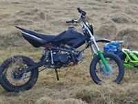 pit bike 110cc runs and rides mint !