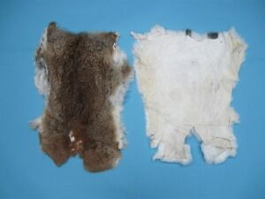 CRAFT Czech #3 Rabbit Skins FOR SALE