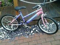 Mountain bike suit 4ish to 7.8 ish 20inch wheels 6gears all in good working order
