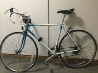 Single Speed Mens Bike by Raleigh Racing Esprit 70 Student Bike