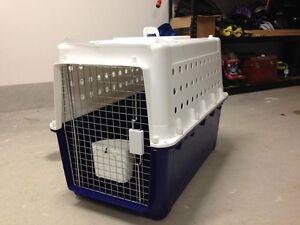 Pet Transporter Bonner Gungahlin Area Preview