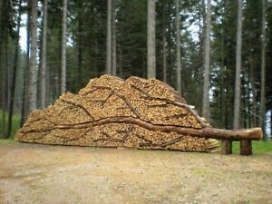 Firewood for sale , bag or cord for sale