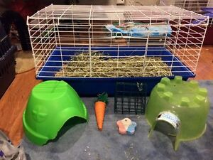 guinea pig hedgehog dwarf rabbit cage and all supplies in pic