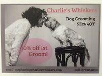DOG GROOMING, DAYCARE AND BOARDING -SYDENHAM, SOUTH EAST LONDON