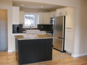 Beautifully renovated 3 BRM house for rent