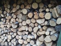 hardwood logs for sale, get delivery before Christmas.
