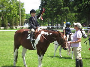 RIDING LESSONS/ BOARDING