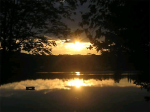 Canada day cottage rental!