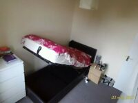 Short let only- single bed