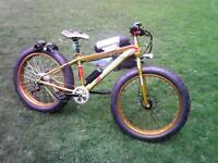 Mountain bike Electric