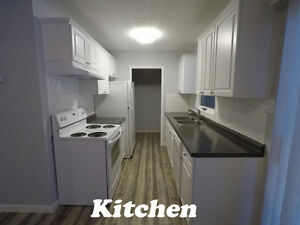 FOR RENT 3 BDRM HENDERSON SOUTHSIDE NEWLY RENOVATED