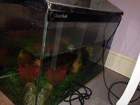 Fish tank 71 liters