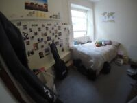 Room available June 1st- June 30th