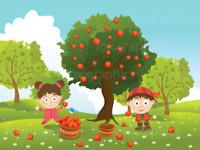 Cueilleurs /cueilleuses de pommes recherché(e) s