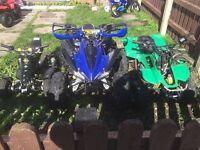 Swap quads for Pitbike