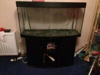 fish tank jewel 260 bow front