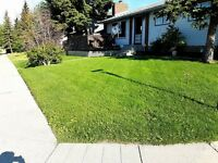 Highest Quality Lawn Care Guaranteed