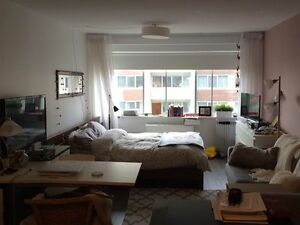 beautiful, professional studio in Golden Mile - 5 min to McGill