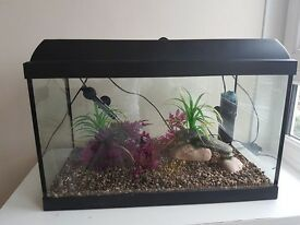 COMPLETE FISH TANK FOR SELL