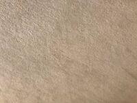 Cream Carpet 16.5 M2