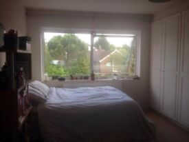 Spacious double room in Ealing Broadway for rent ASAP - perfect for couples!