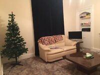 2 bedroom flat, looking for friendly flatmate