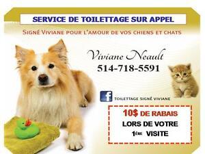 Toilettage à domicile pour Montréal,Laval et Rive-Nord