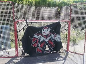 Hockey net, passer, and sheet of plastic ice (not in picture)