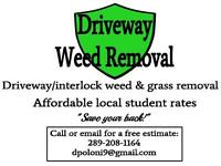 Driveway Weed Removal