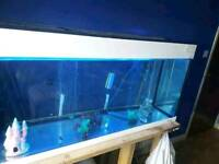 4ft tank in good condition with heater and external filter and stand