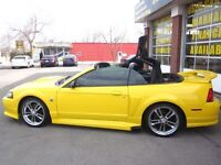 2004 Ford Mustang GT - LOW KMS - 40th Edition - UNIQUE VEHICLE!!