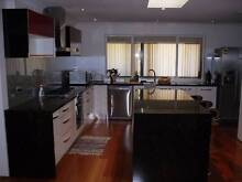1x Room for rent- willetton, new moden, large, close to southland Willetton Canning Area Preview