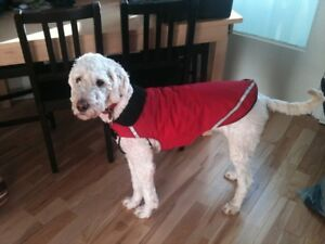 Red dog coat - fleece lined