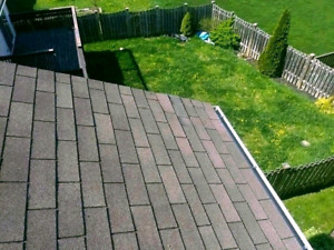 Roofing, Repairs, & More