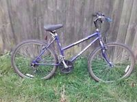 ladies 18 speed raleigh mountain bike for sale in good working order