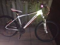 Cannondale trail SL double disc brake 2013 model men's mountain bike top model of bicycle trek giant