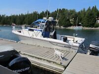 25 foot proline fishing,diving boat with two 150 out boards