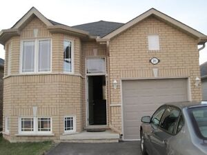 Room rental close to Fleming College