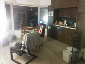 May to September Sublet - Yorkville Apartment