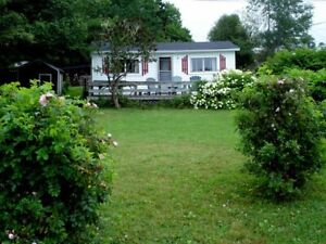 Jib Cottage Ocean Front Rental - Hubbards Cove, Pet Friendly