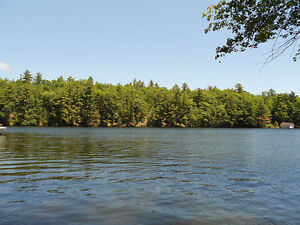 Waterfront Cottage on Trent-Severn OPEN HOUSE SAT SEP 24