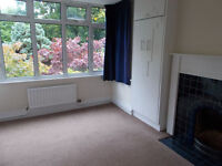 Sunny Double Room Available In Characterful House in Follaton, Totnes
