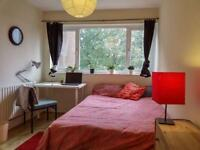 Great Double Room available in Deptford !!
