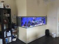 Marine fish tank 6 x 2 x 21in