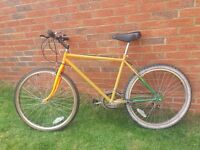 12 speed orange mountain bike. ready to ride all working