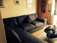 Family Sized Sofa