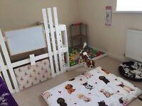 Doggy Holiday (dog boarding), Doggy day care (pet sitting) dog walking